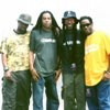 Conciertos de Living Colour